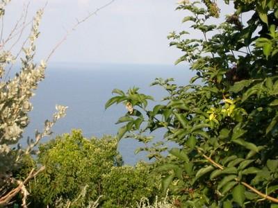 Ancona_beach_view_1