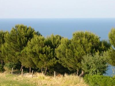 Ancona_beach_view_3